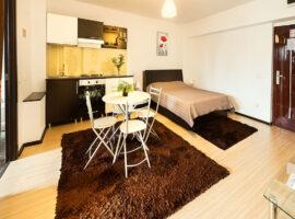 Apartament cu 2 camere situat in Sfantul Lazar
